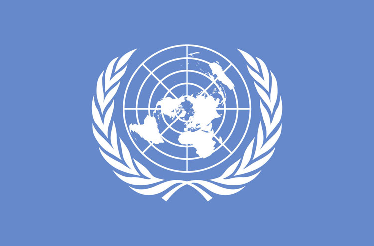 Bandeira ONU