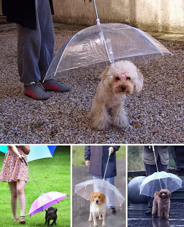 guarda-chuva-criativo-25