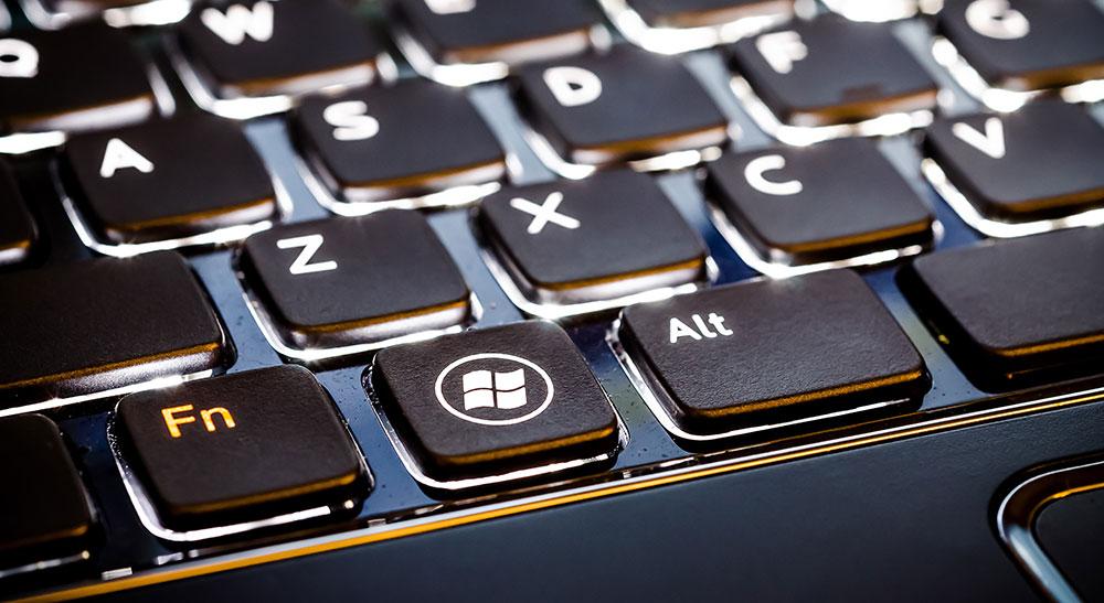 Radu Bercan / Shutterstock.com