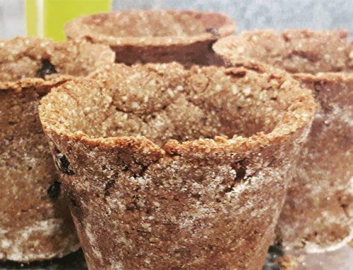 Copo comestível e proteico com sabor de cookie para tomar café