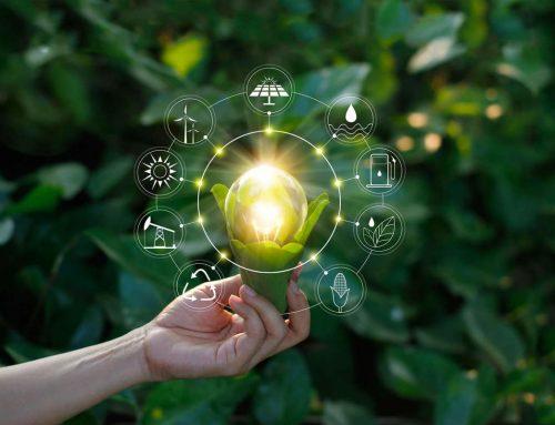 O que é o empreendedorismo sustentável?