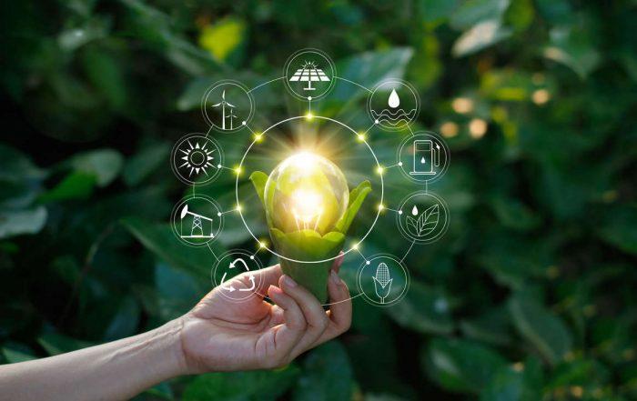 Imagem conceitual de uma lâmpada dentro de um milho com ícones sustentáveis em volta simbolizando o empreendedorismo sustentável
